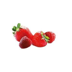 infuso alla frutta in filtro fragola e lampone sandemetrio