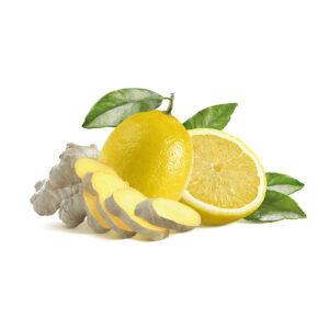 infuso alla frutta in filtro zucchero e limone sandemetrio